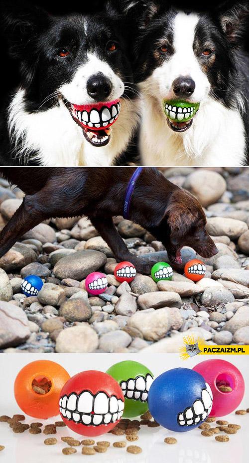 Pomysłowe piłki dla psów
