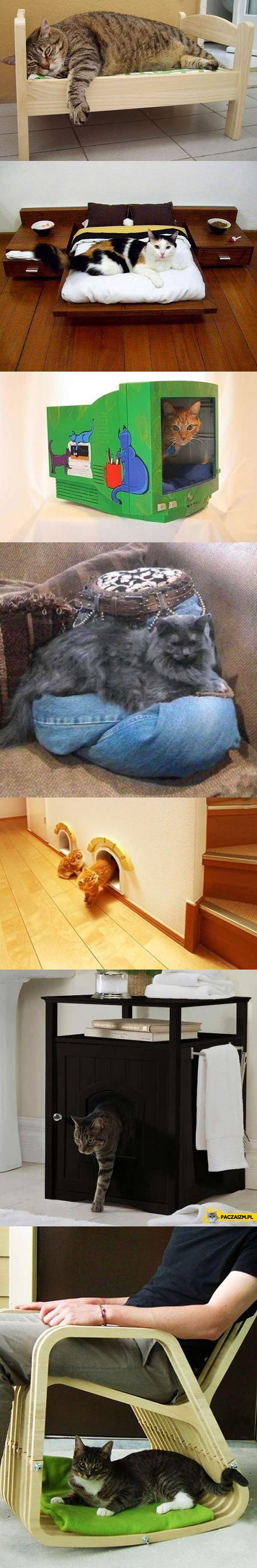 Pomysły na łóżko dla kota
