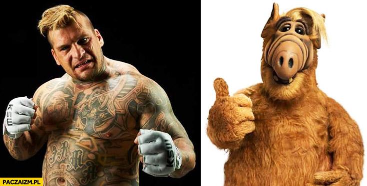 Popek Monster wygląda jak Alf porównanie