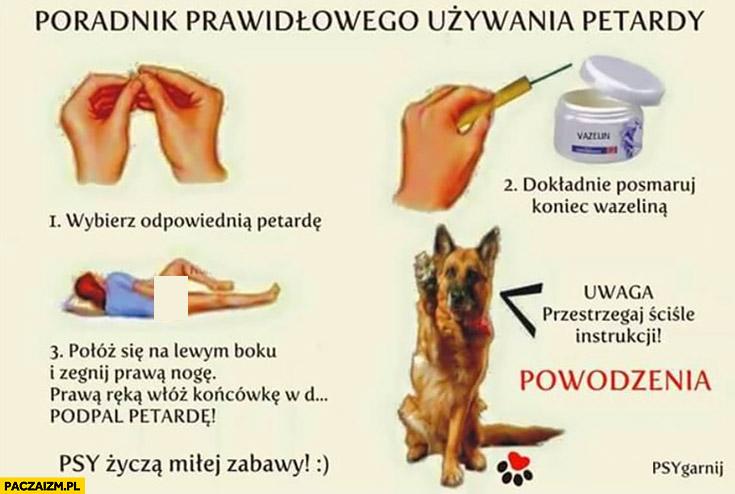 Poradnik prawidłowego używania petardy: wybierz petardę, posmaruj koniec wazeliną, włóż ją sobie w tyłek, podpal petardę, psy życzą dobrej zabawy