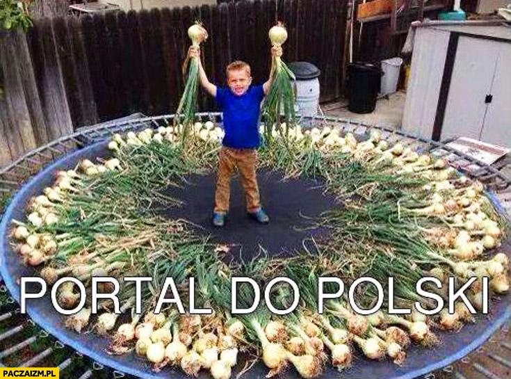 Portal do Polski cebula na trampolinie