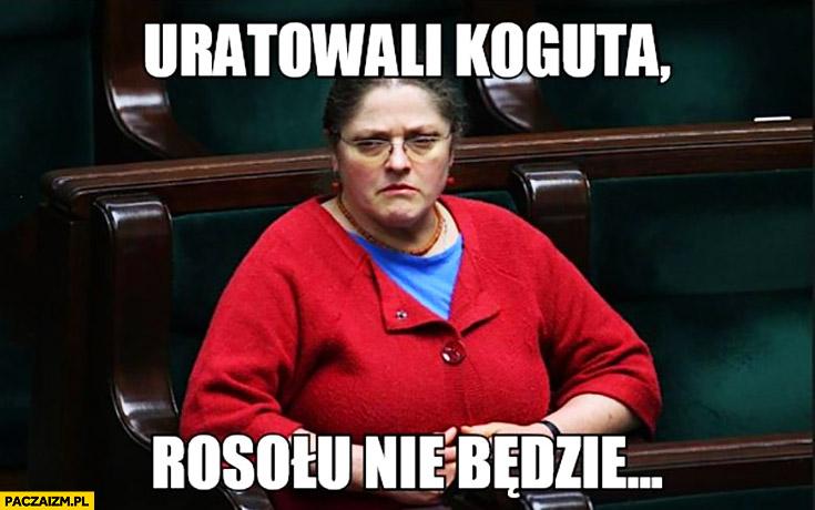 Posłanka Pawłowicz uratowali koguta, rosołu nie będzie