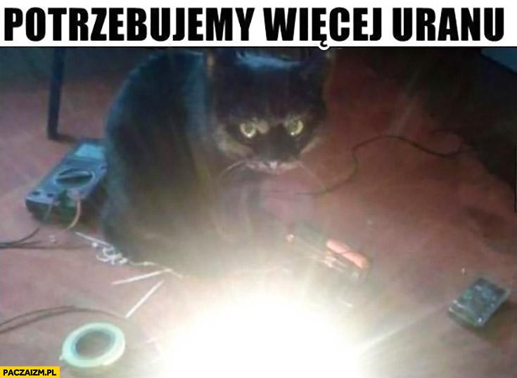 Potrzebujemy więcej uranu. Kot buduje bombę