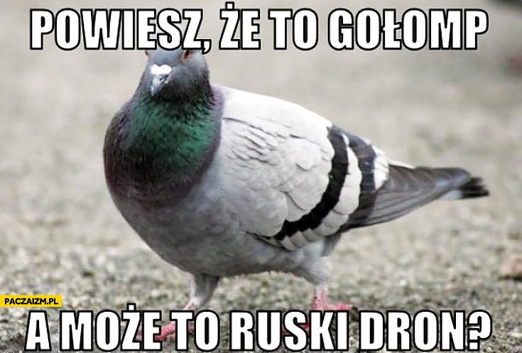 Powiesz, że to gołomp a może to ruski dron?