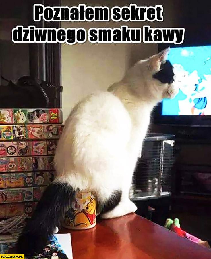 Poznałem sekret dziwnego smaku kawy kot siedzi w kubku