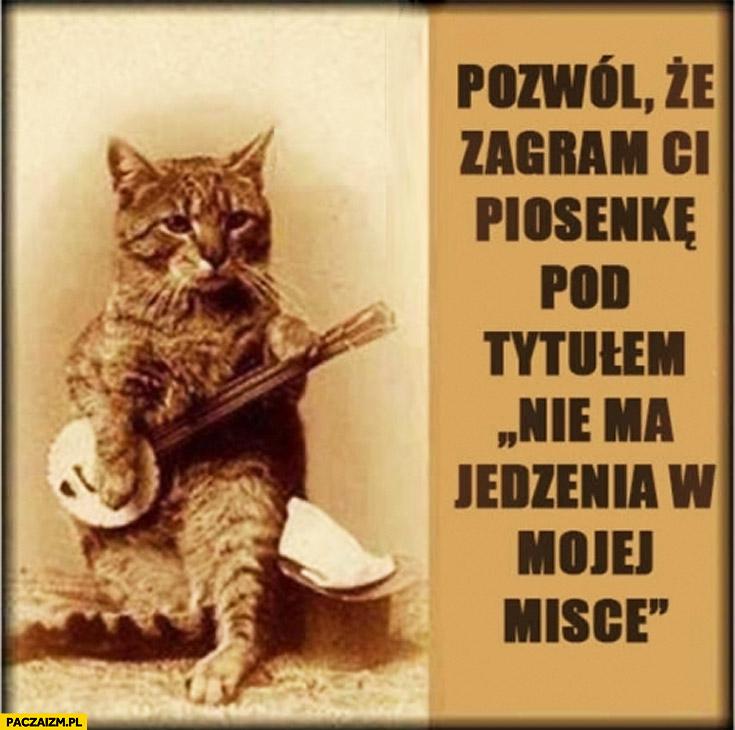 Pozwól że zagram Ci piosenkę pod tytułem nie ma jedzenia w mojej misce kot