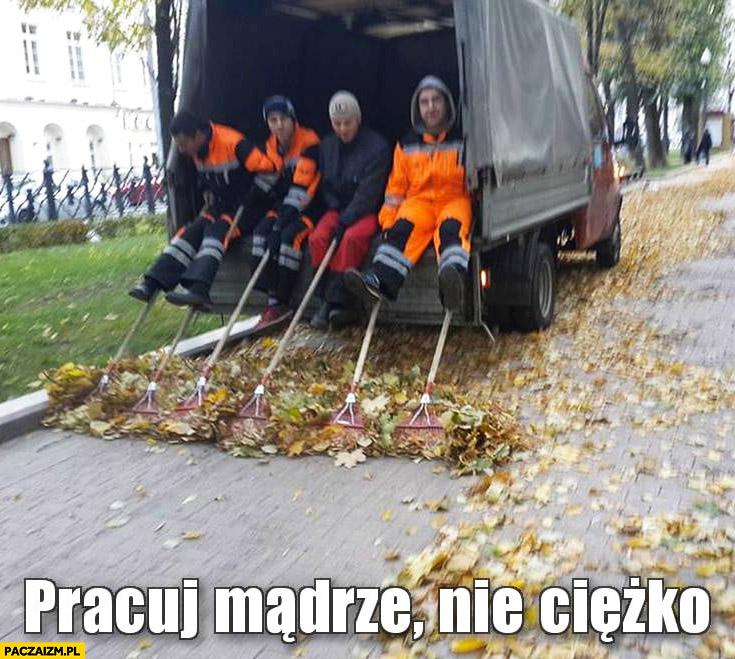 Pracuj mądrze nie ciężko grabienie liści z furgonetki
