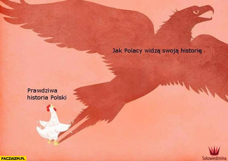 Prawdziwa historia Polski kura, jak Polacy widza swoja historie orzeł cień