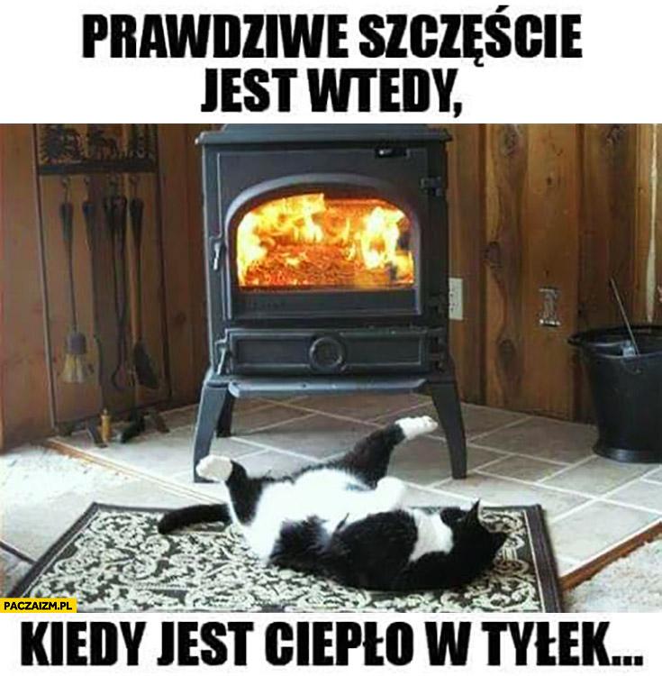 Prawdziwe szczęście jest wtedy kiedy jest ciepło w tyłek kot przy kominku