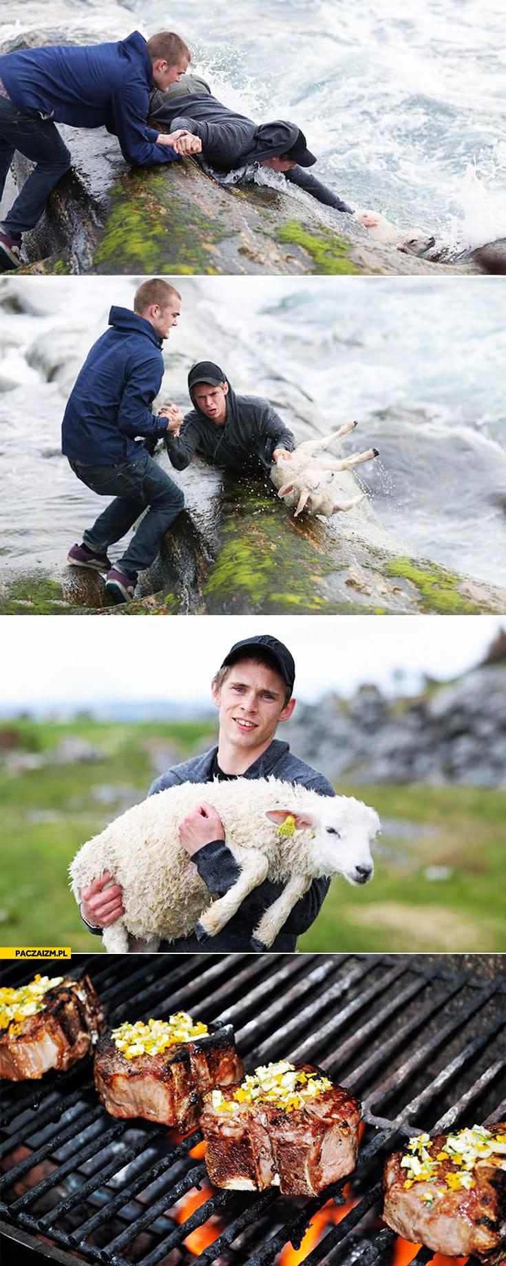 Prawdziwy bohater ratuje owieczkę