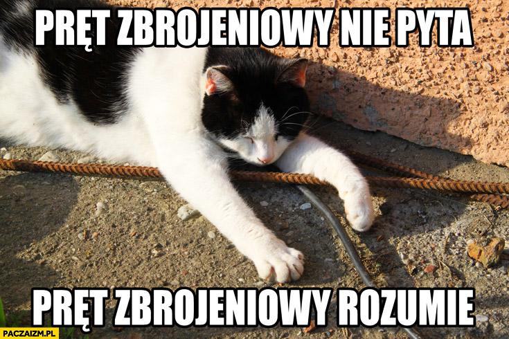 Pręt zbrojeniowy nie pyta, pręt zbrojeniowy rozumie kot