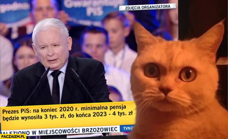 Prezes PiS na koniec 2020 minimalna pensja 3000 Jarek to jebnie kot