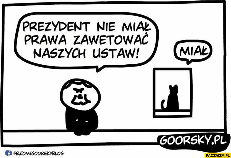Prezydent nie miał prawa zawetować naszych ustaw miau. Kaczyński kot Goorsky