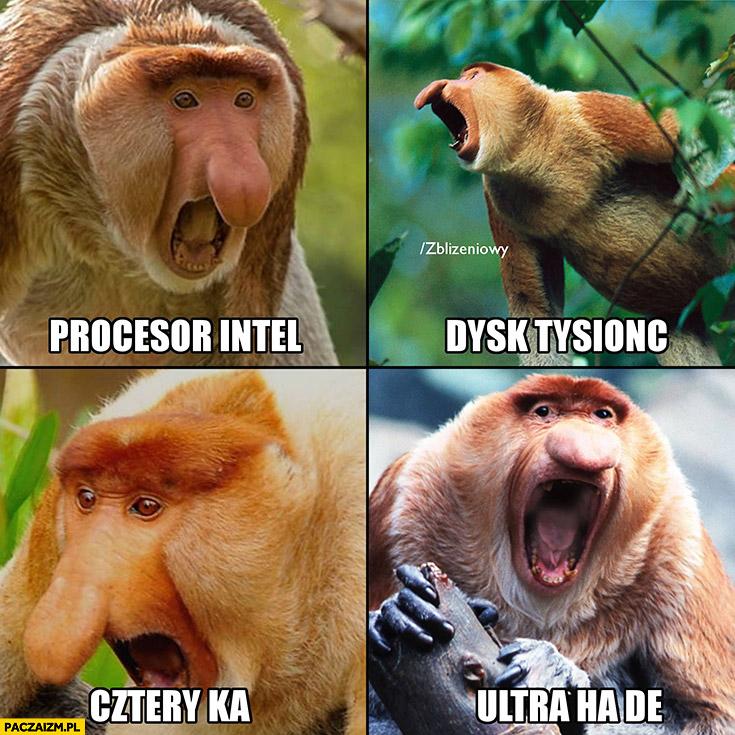 Procesor Intel, dysk tysionc, cztery ka, ultra ha de reklama komputera w radiu. Typowy polak nosacz małpa