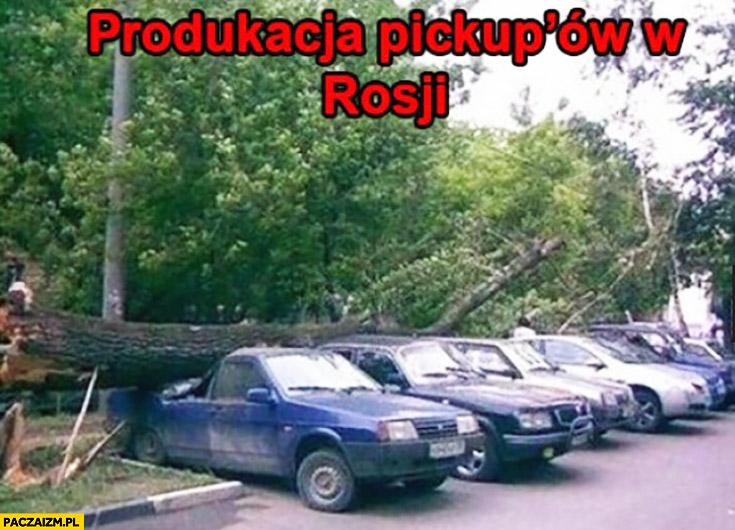 Produkcja pickupów w Rosji drzewo spadło na samochody