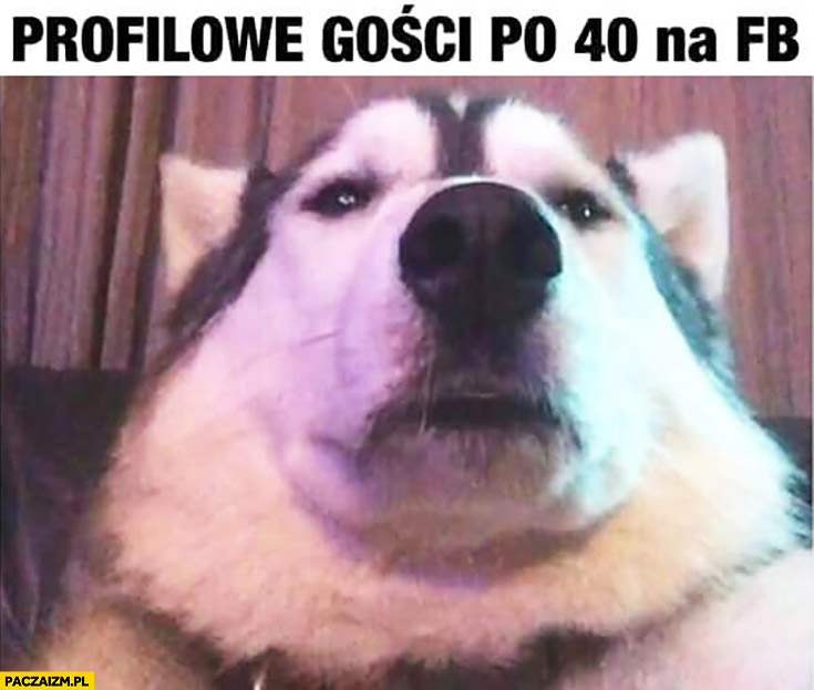 Profilowe gości po 40. czterdziestce na fb facebooku pies selfie