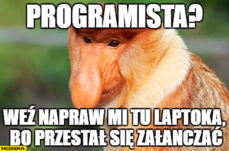 Programista? Weź napraw mi tu laptopa bo przestał się włączać typowy Polak nosacz małpa