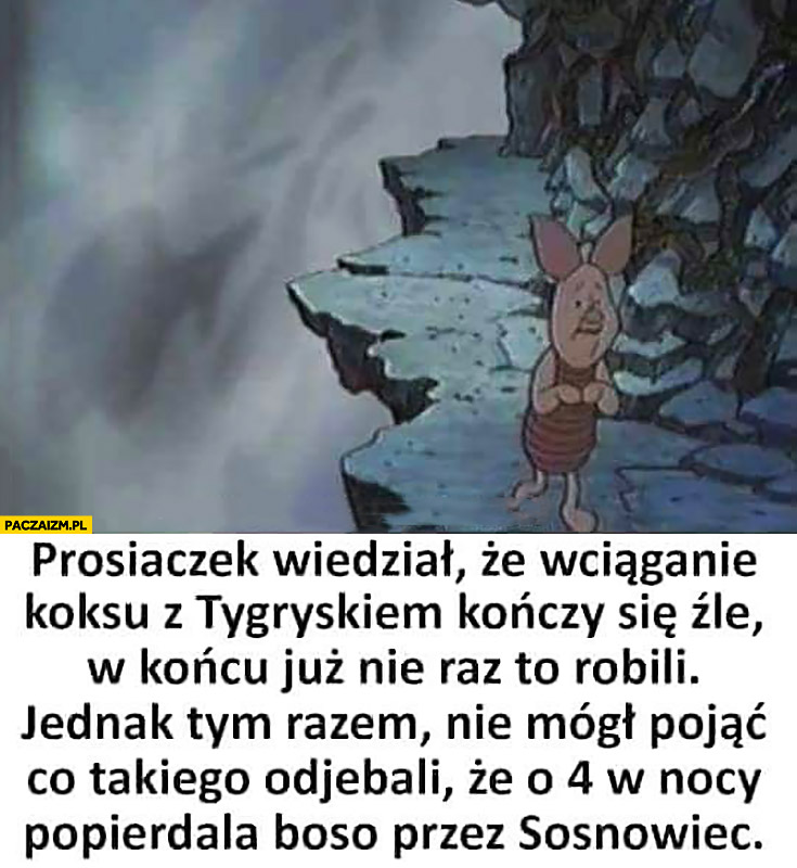 Prosiaczek wiedział, że wciąganie koksu z Tygryskiem kończy się źle, jednak tym razem nie mógł pojąć co takiego odwalili, że o 4 w nocy popierdziela boso przez Sosnowiec