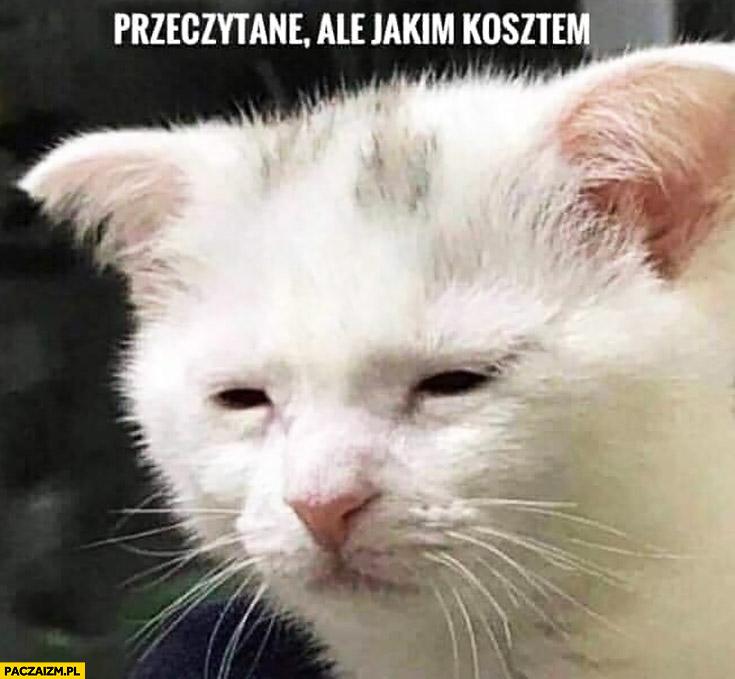 Przeczytane ale jakim kosztem kot zmęczony smutny
