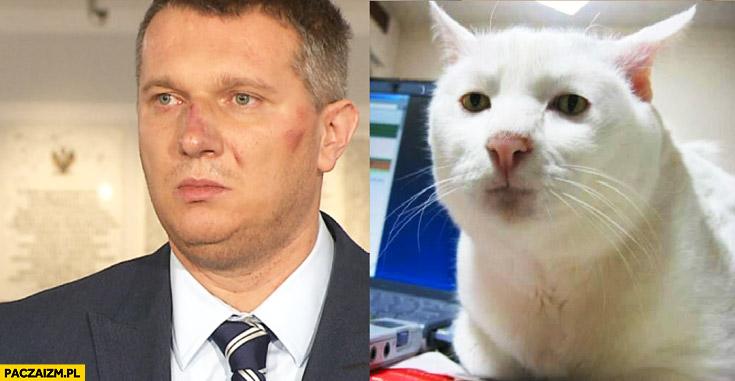 Przemysław Wipler jak kot porównanie
