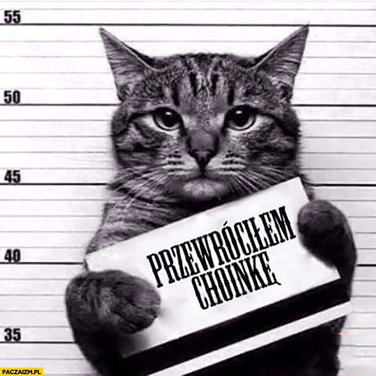 Przewróciłem choinkę kot winny zdjęcie policyjne