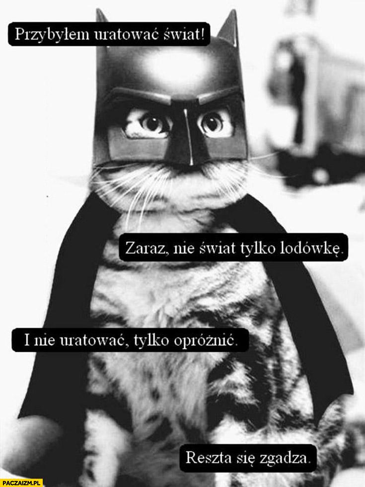 Przybyłem uratować świat, nie świat tylko lodówkę i nie uratować tylko opróżnić. Reszta się zgadza. kot