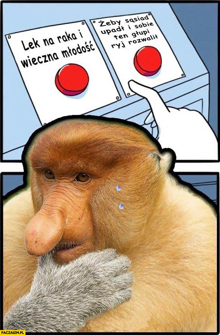 Przycisk wybór: lek na raka i wieczna młodość vs żeby sąsiad upadł i sobie głupi ryj rozwalił typowy Polak nosacz małpa