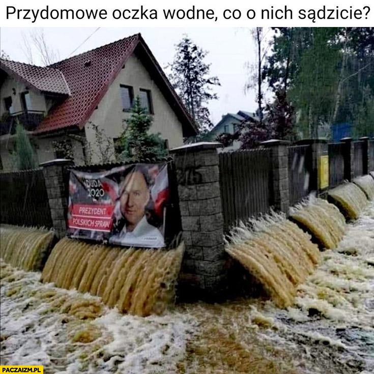 Przydomowe oczka wodne co o nich sądzicie? Powódź