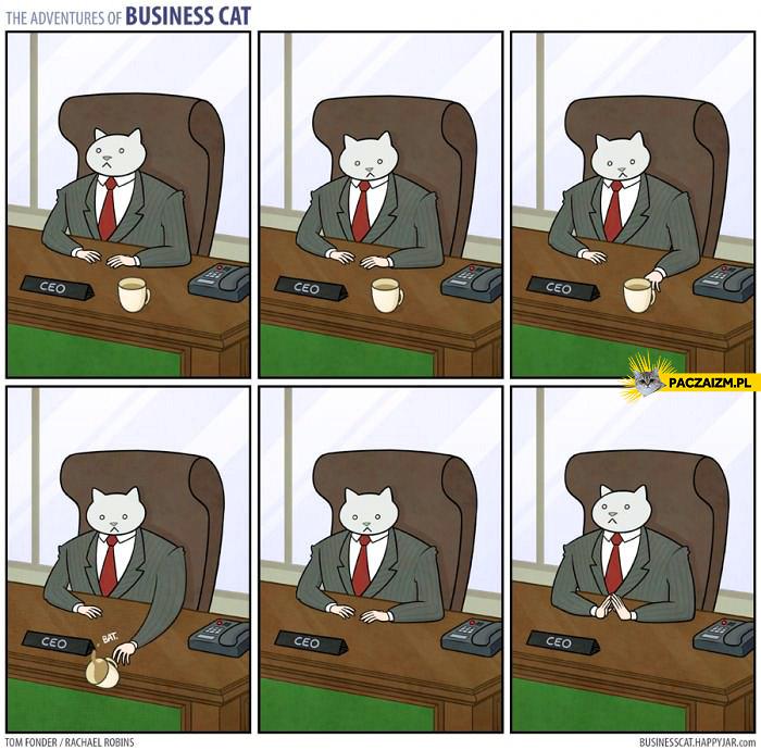 Przygody kota biznesmena – kawa