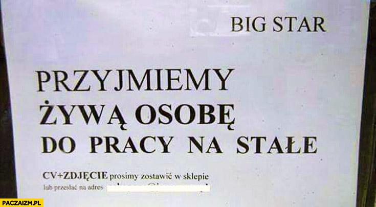 Przyjmiemy żywą osobę do pracy na stałe kartka ogłoszenie Big Star