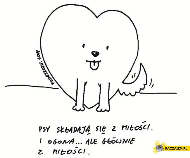 Psy składają się z miłości i ogona ale głównie z miłości