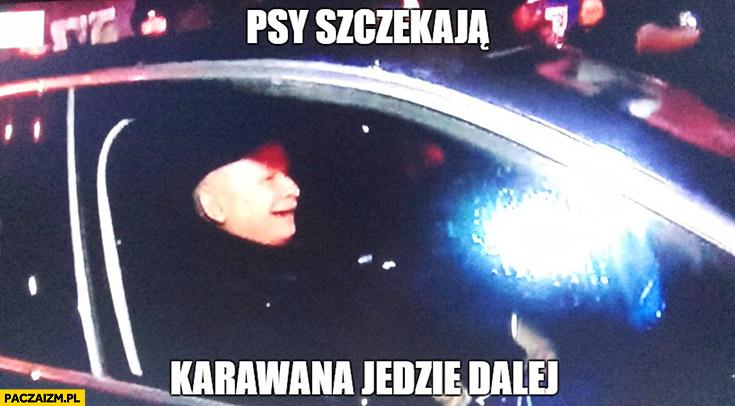 Psy szczekają, karawana jedzie dalej zadowolony Kaczyński