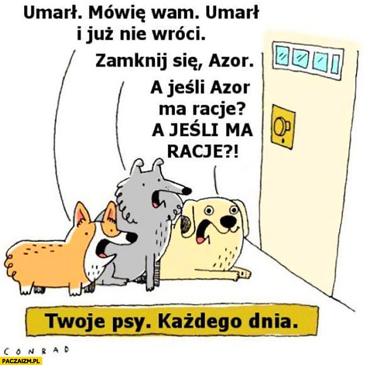 Psy właściciel poszedł mówię wam umarł i już nie wróci, zamknij się Azor, a jeśli Azor ma racje? Twoje psy każdego dnia