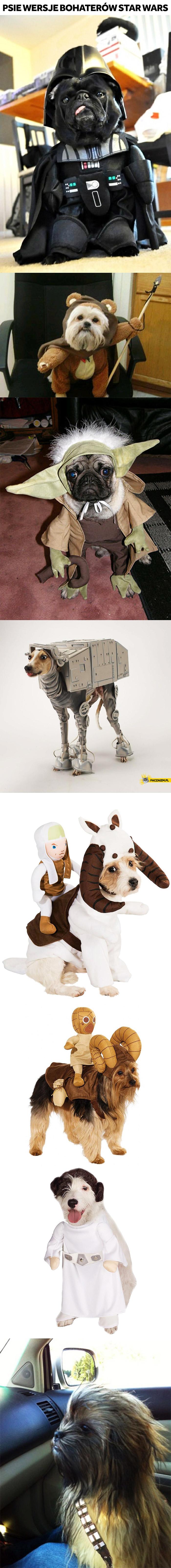 Psy z Gwiezdnych Wojen