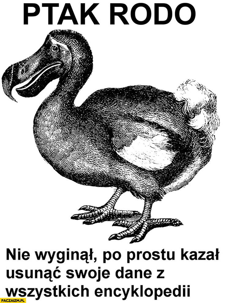 Ptak RODO nie wyginął po prostu kazał usunąć swoje dane ze wszystkich encyklopedii