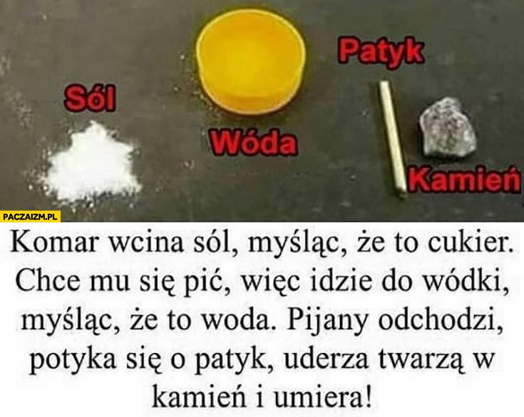 Pułapka na komara wcina sól myśląc, że to cukier, idzie do wódki myśląc ze to woda, pijany odchodzi potyka się o patyk uderza twarzą w kamień i umiera