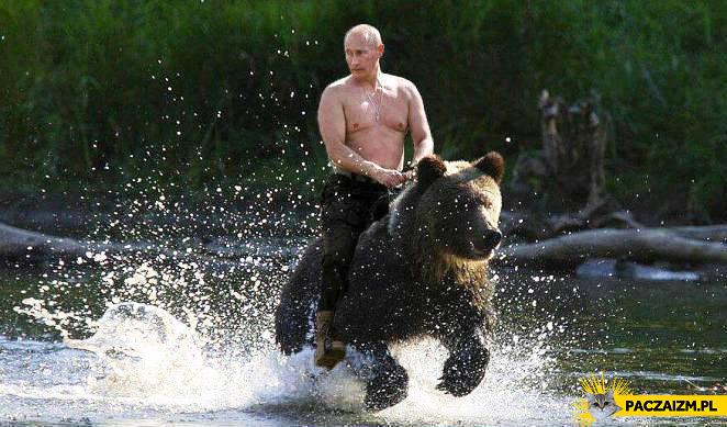 Putin na niedźwiedziu