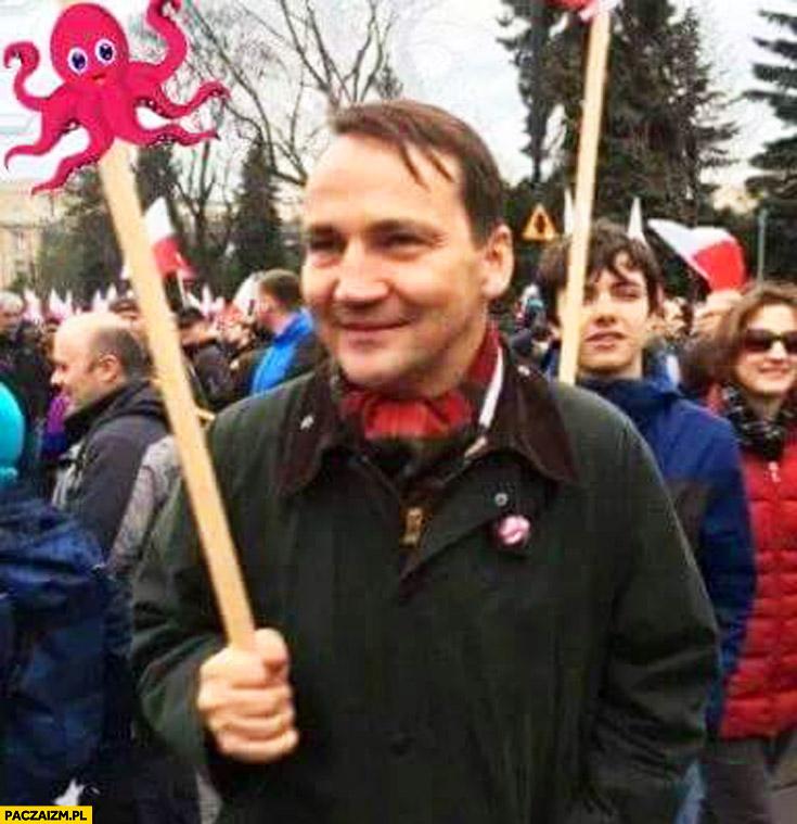 Radek Sikorski z ośmiorniczką demonstracja KOD