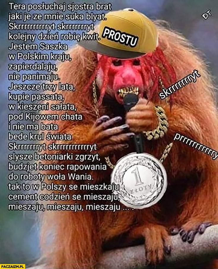 Raper hiphopowiec małpa Ukrainiec rapuje rymuje przeróbka