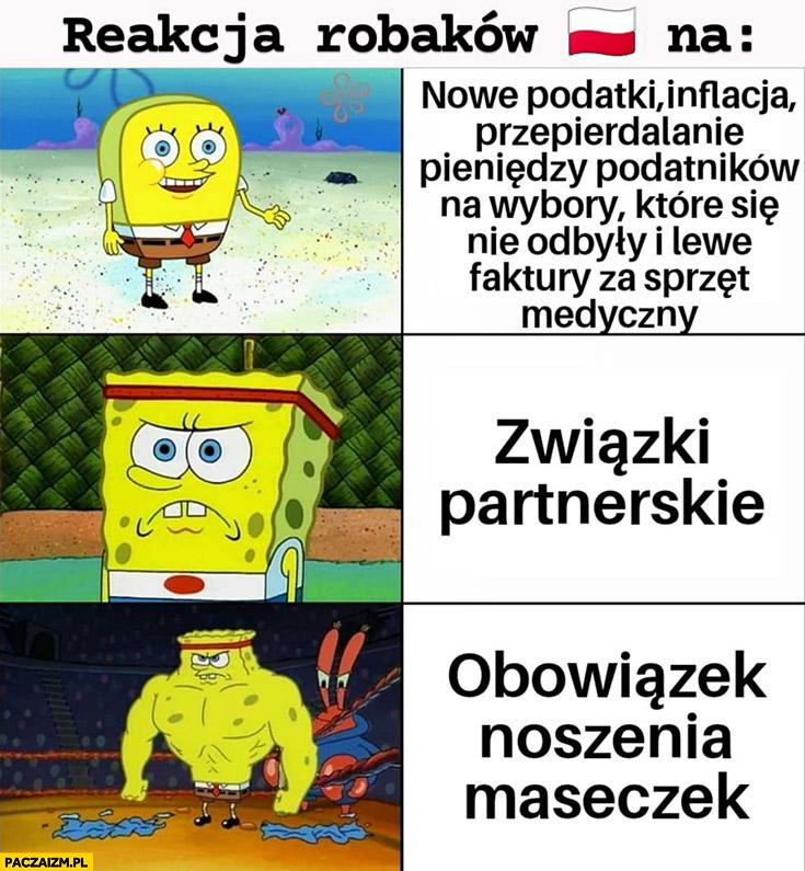 Reakcja polaków robaków na podatki, inflację, związki partnerskie obowiązek noszenia maseczek Spongebob porownanie