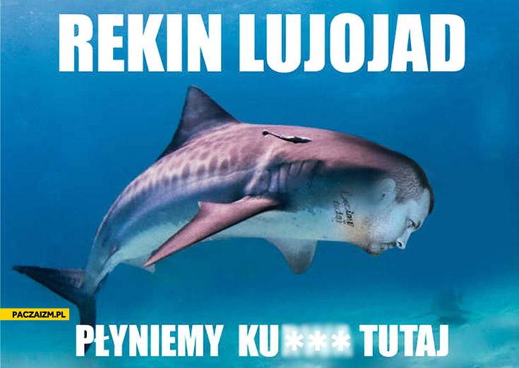 Rekin lujojad płyniemy kurna tutaj