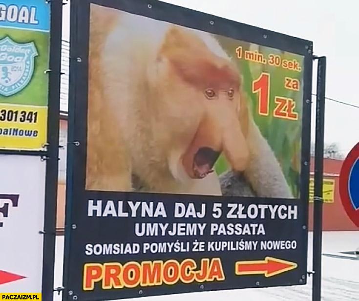 Reklama myjni Halina daj 5 złotych umyjemy Passata sąsiad pomyśli, że kupiliśmy nowego typowy Polak nosacz małpa