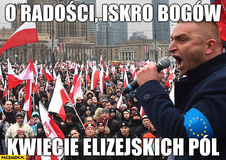 Robert Bąkiewicz śpiewa hymn UE Unii Europejskiej o radości iskro bogów kwiecie elizejskich pól