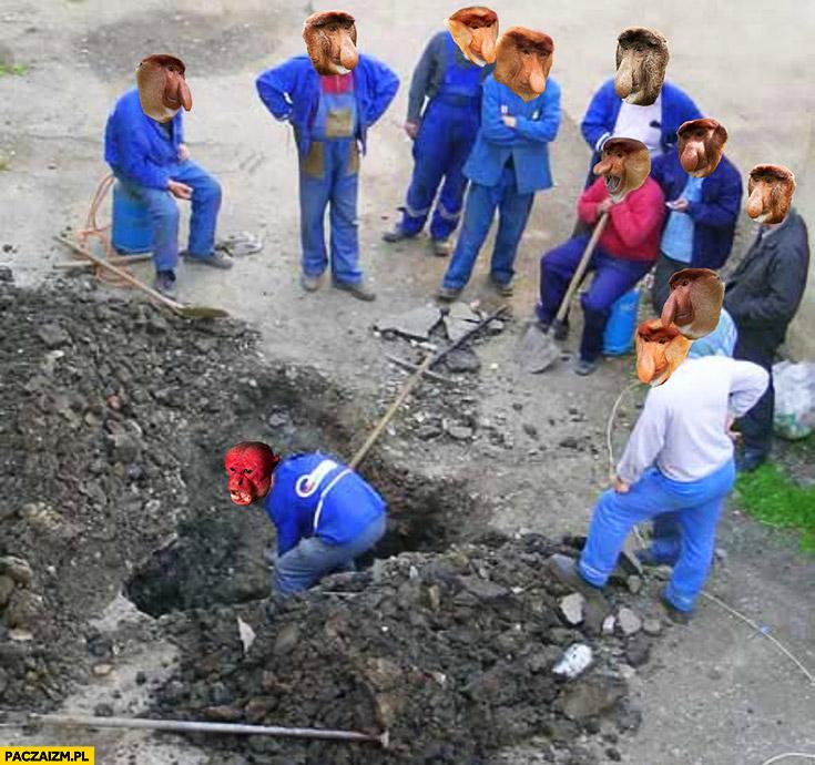 Robotnicy tylko Ukrainiec pracuje typowy Polak nosacz małpa