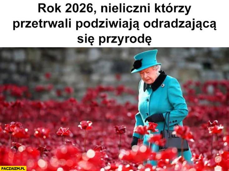 Rok 2026 nieliczni którzy przetrwali podziwiają odradzająca się przyrodę królowa Elżbieta