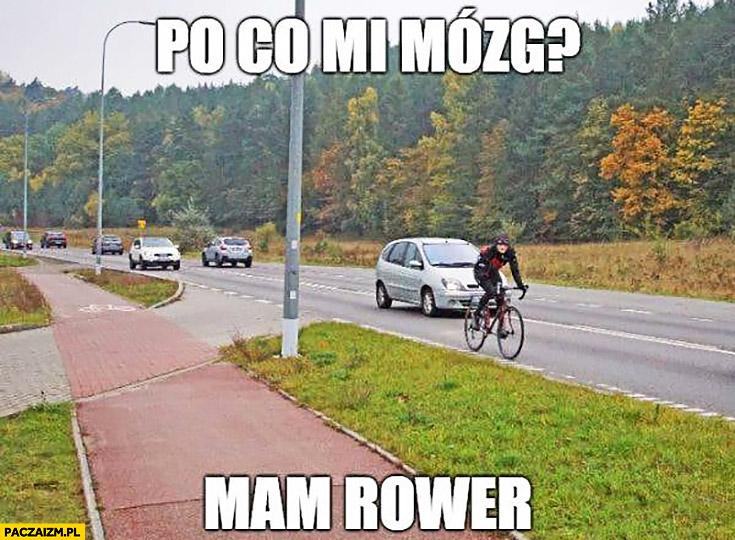 Rowerzysta po co mi mózg mam rower. Jedzie drogą zamiast ścieżką rowerową