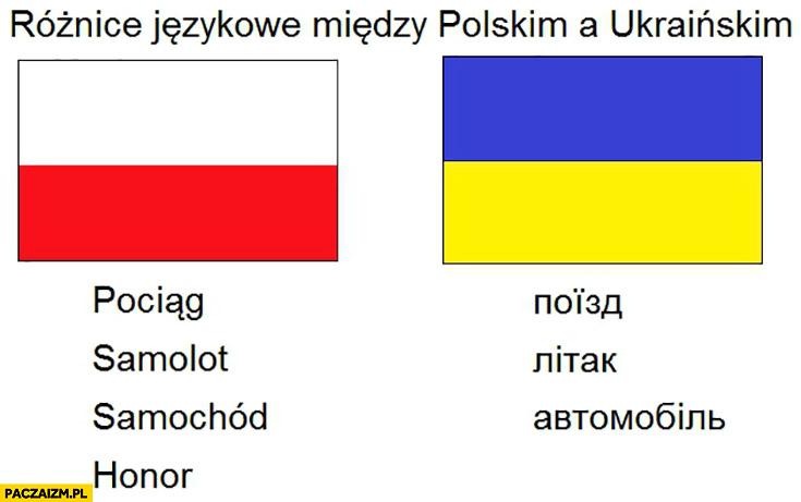 Różnice językowe między polskim a ukraińskim honor brak