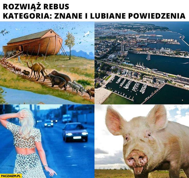 Rozwiąż rebus, kategoria znane i lubiane powiedzenia Arka Gdynia kurna świnia
