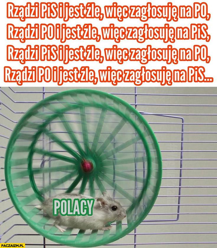 Rządzi PiS jest złe więc głosuję na PO i na odwrót Polacy w kołowrotku