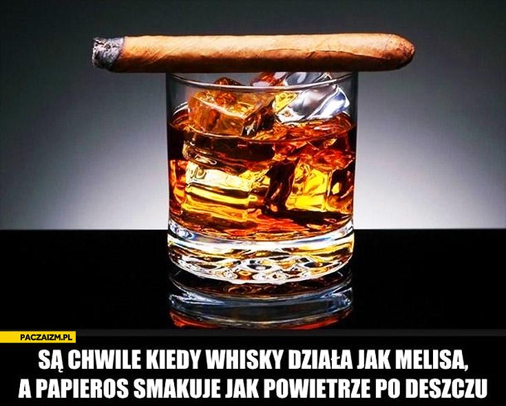 Są chwile kiedy whiskey działa jak melisa a papieros smakuje jak powietrze po deszczu